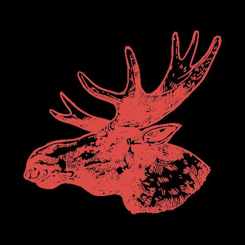 Moose Memo